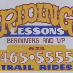 Riding Lessons for Beginners and Up